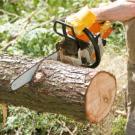 K and S Tree Service - Nekoosa, WI - Tree Services