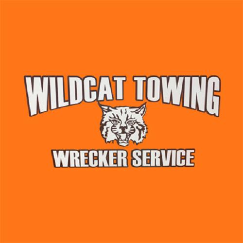 Idalou Wildcat Towing - Idalou, TX - Auto Towing & Wrecking