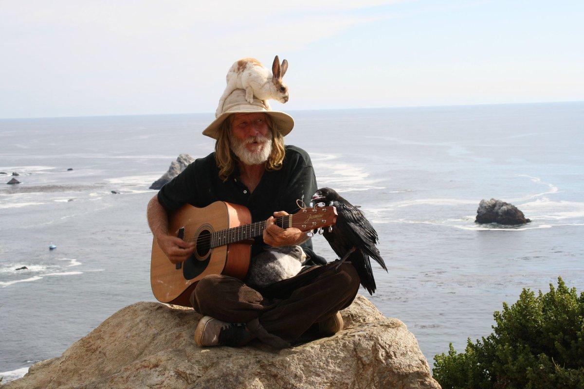 Поздравляю, смешные картинки с гитарами