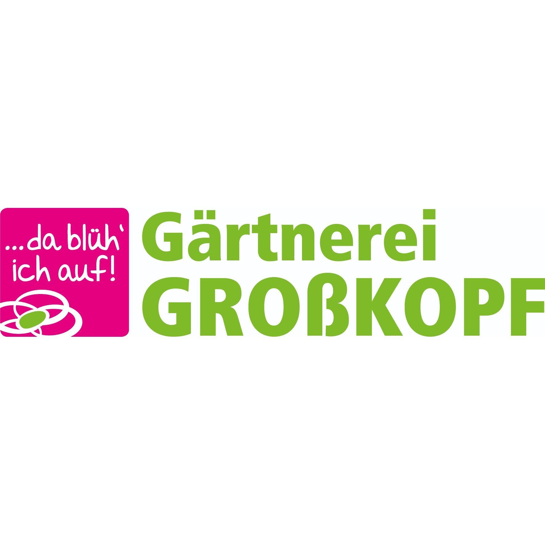 Bild zu Gärtnerei Großkopf in Hemhofen