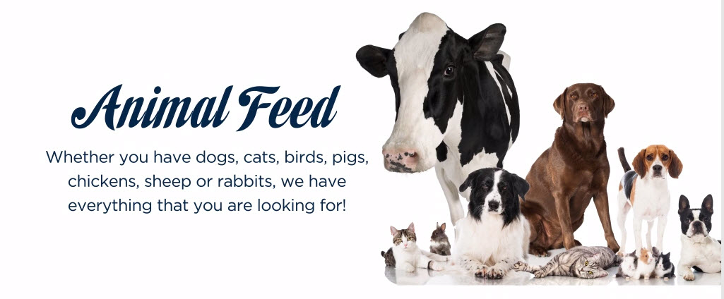 Davis Feed & Farm Supply Ltd