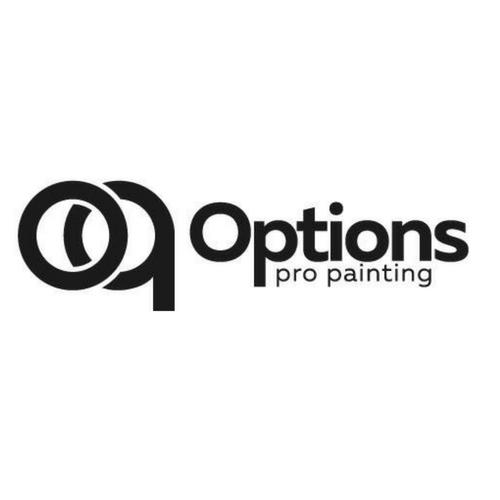 Options Pro Painting