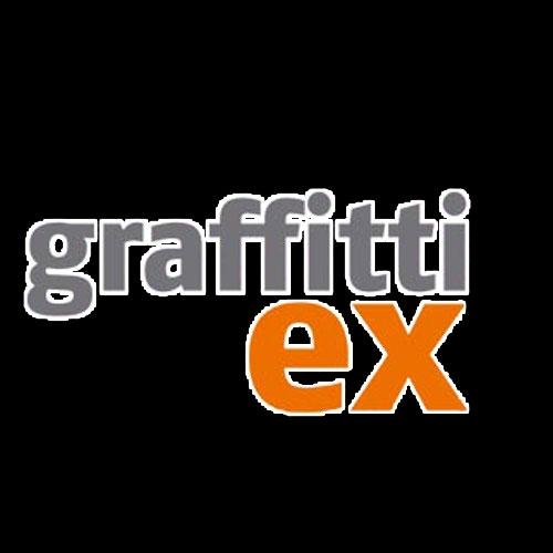 Bild zu Graffitti ex GmbH & Co. KG in Dresden