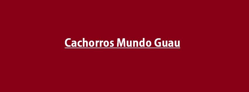 CACHORROS MUNDO GUAU