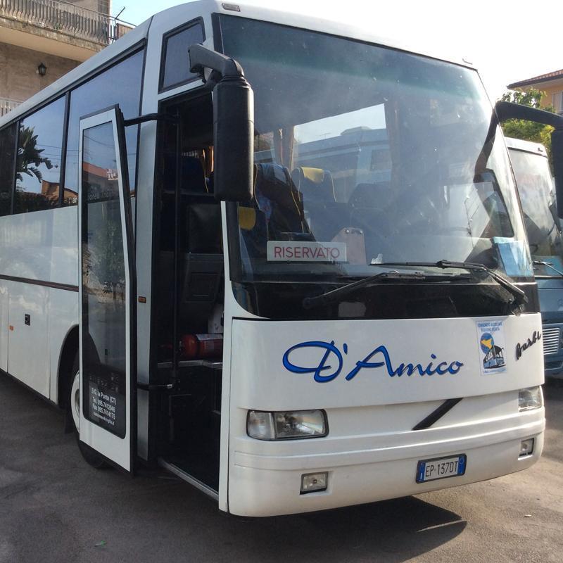 Noleggio Bus D'Amico