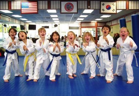 Tigon Martial Arts INC image 1