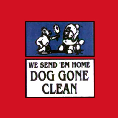 Dog Gone Clean - Round Lake Heights, IL - Pet Grooming