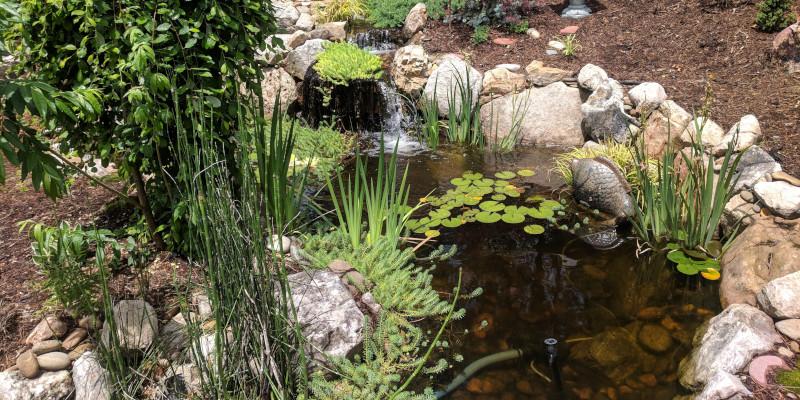 Get your water features up and running again with our pond and water feature repair services.