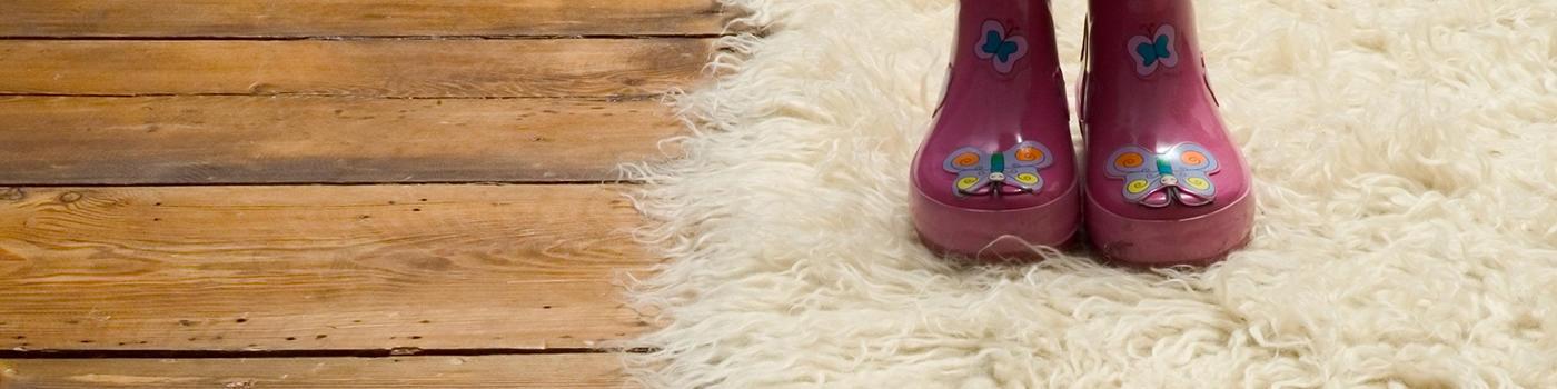 Ray's Carpet Care