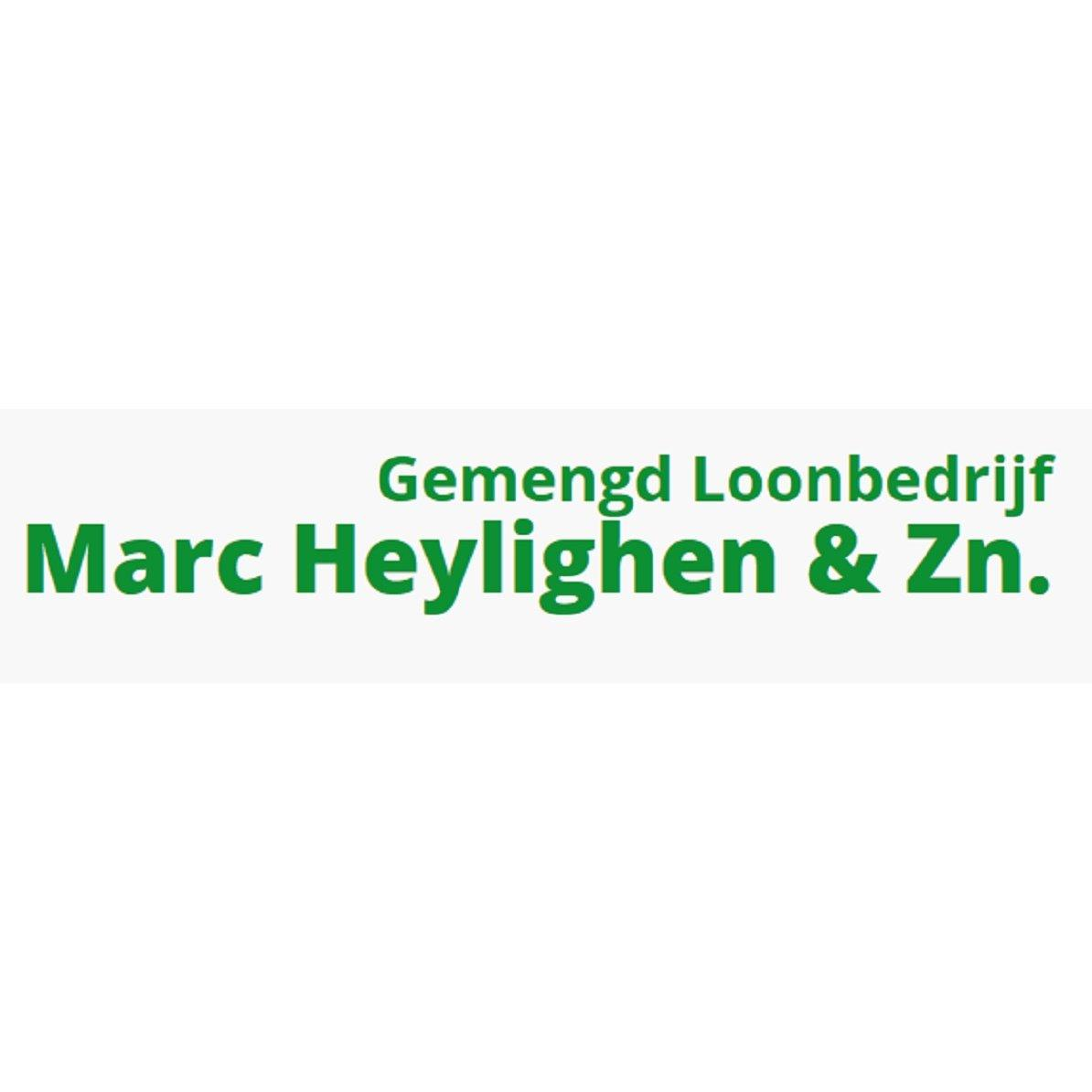 Marc Heylighen & Zn