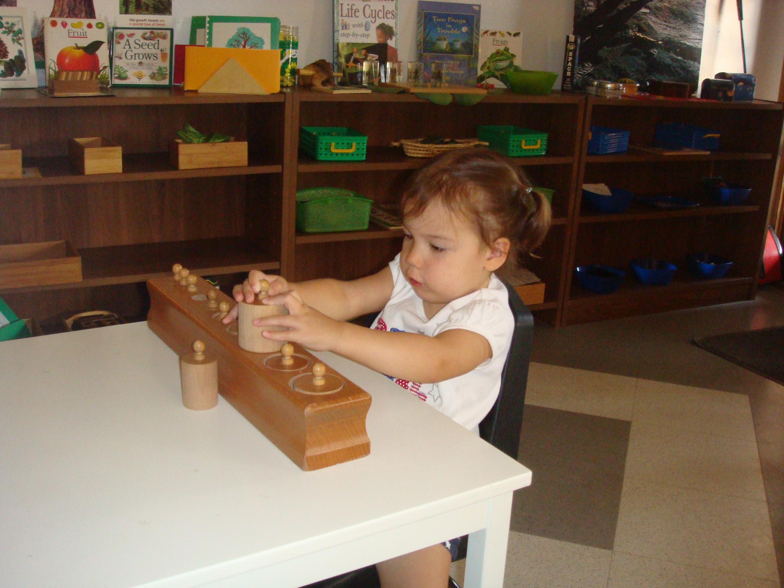Community Montessori School image 9
