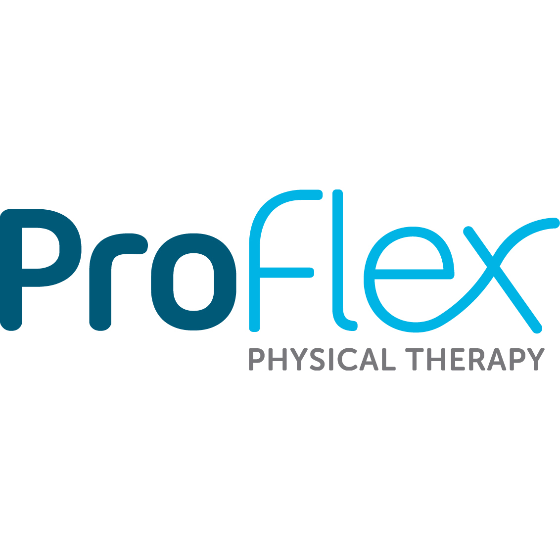 Schrier Physical Therapy