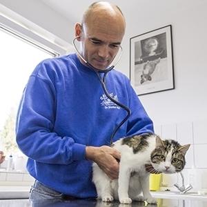 Dr. med. vet. Stefan Wolf Tierarzt