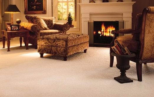 Pure Steam Carpet Cleaning