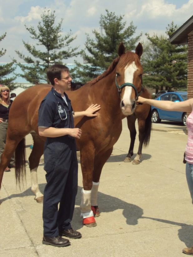 Orrville Pet Spa And Resort