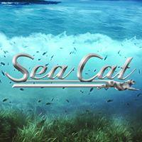Sea Cat Boats