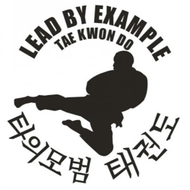 Lead By Example Tae Kwon Do - Fairfax, VA - Martial Arts Instruction