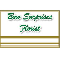 Bow Surprises Florist