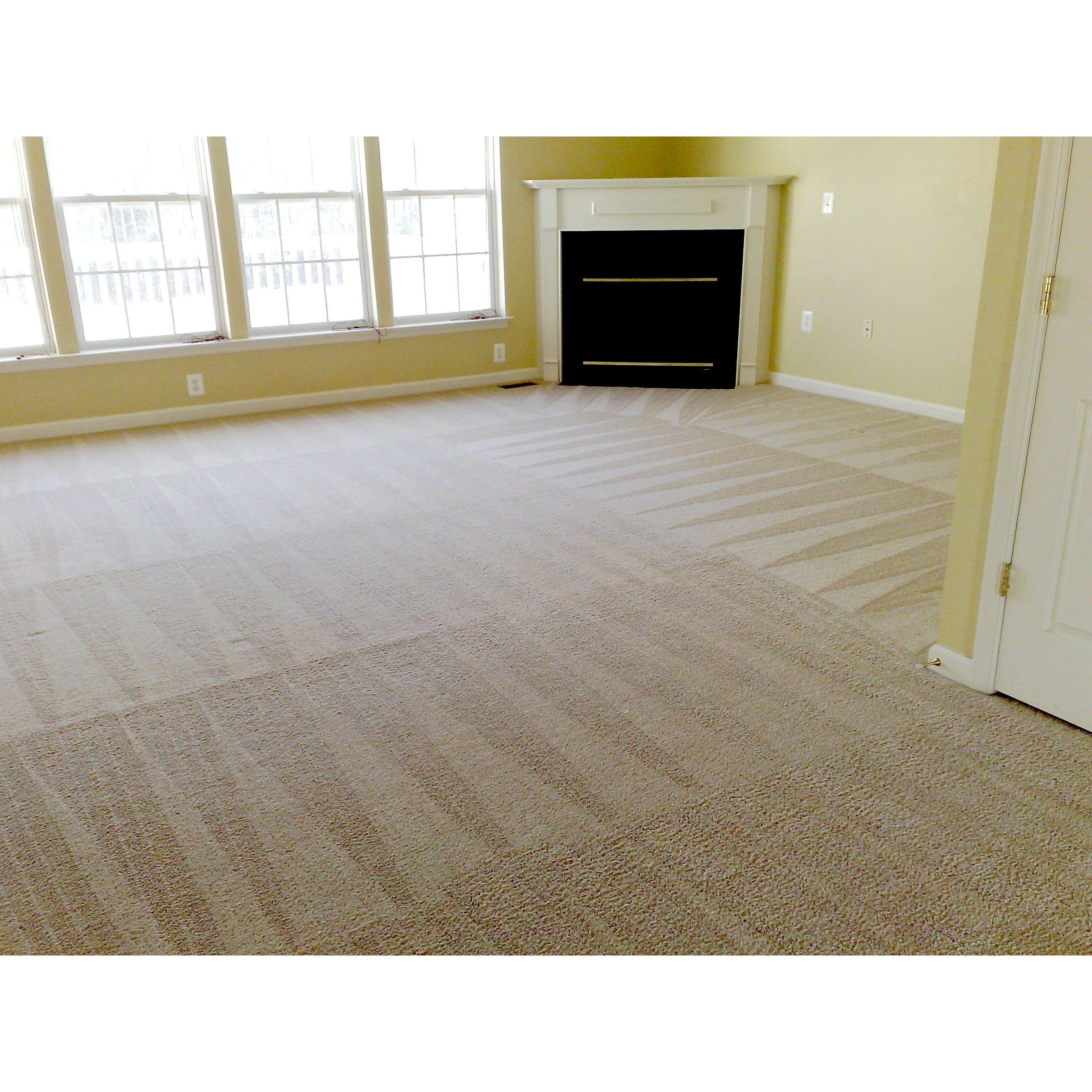 Turbo Carpet & Upholstery Cleaning In Whittier, Ca 90605. Nurse Practitioner Opportunities. Orange County Reverse Mortgage. Michigan Graduate Programs Temeku Golf Course. How To Become A Officer In The Air Force. Top Auto Insurance Companies In Ny. Car Insurance Rates In Michigan. Incident Management Certification. Discounts On Car Insurance Bottom Braces Only