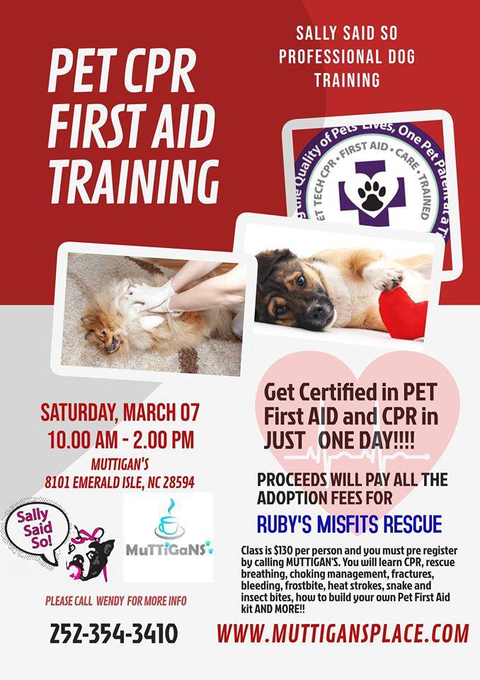cpr pet aid certification class