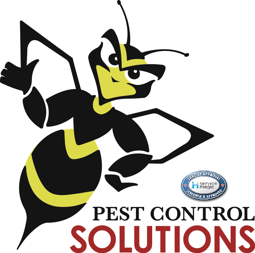 Pest Control Solutions