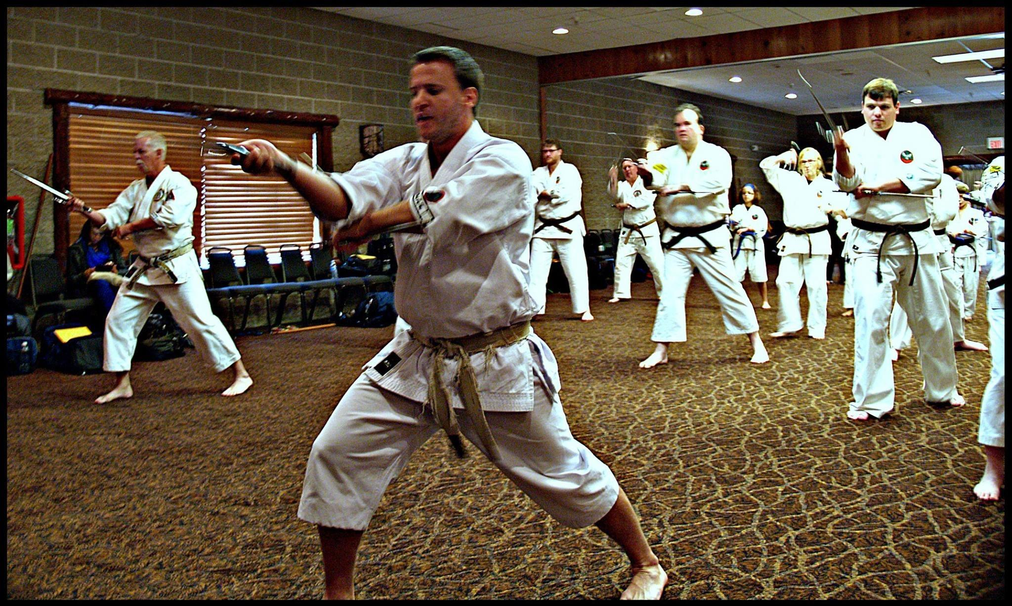 features of karate A multimodal dataset for the analysis of movement qualities in karate martial art   they are based on the geometrical and kinematic features, such as posture.