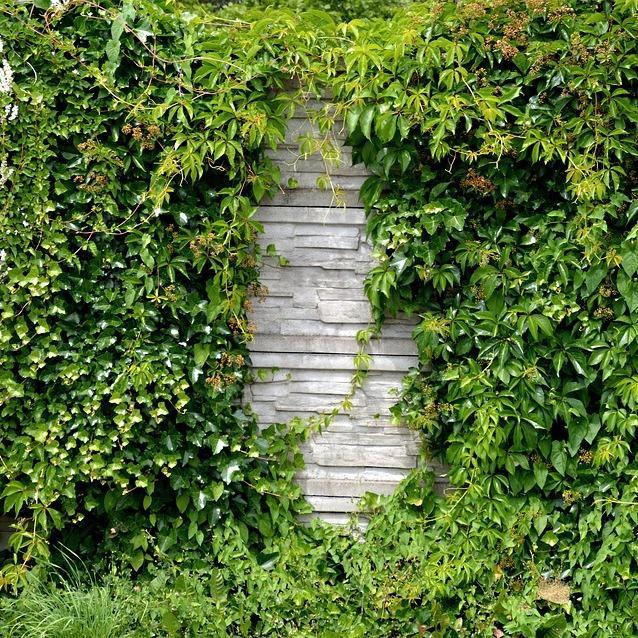 Garten und landschaftsbau neustadt bei coburg for Gartengestaltung coburg