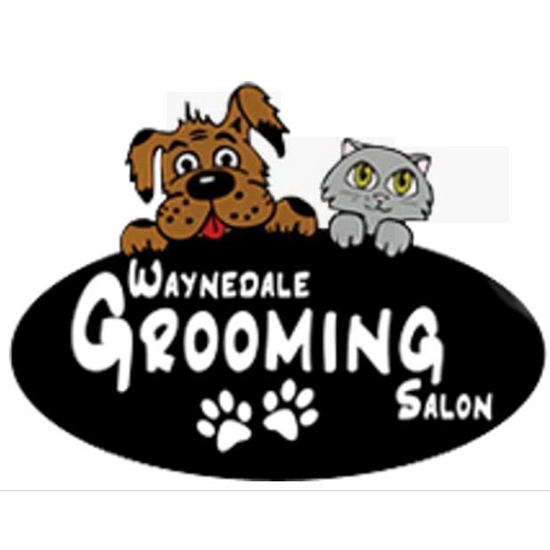 Waynedale grooming salon pet grooming in fort wayne in for A nail salon fort wayne in