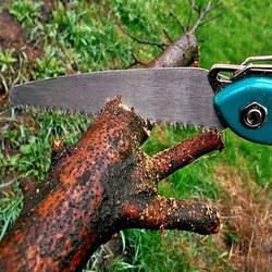 Puckett's Tree Service - Cornelius, NC - Tree Services
