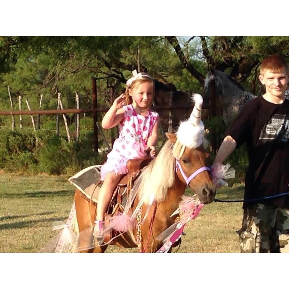 Ponies 2 You