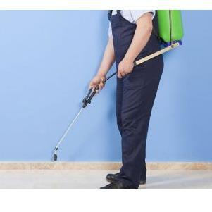 Greystone Pest Solutions