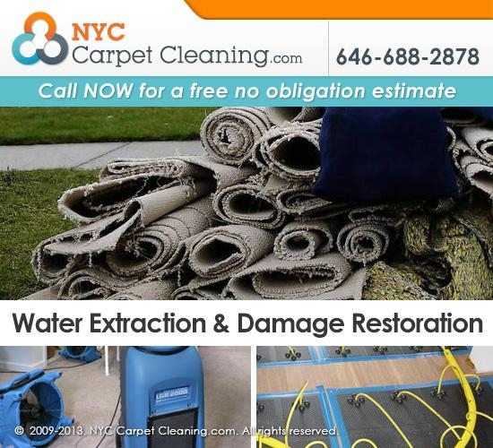 NYC Carpet Cleaning image 3