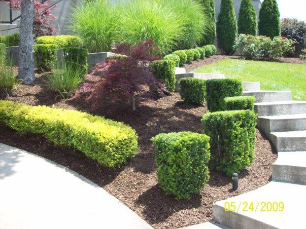 affordable landscape in camdenton mo 65020