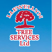 Llewellyn Tree Services - Aberdare, Mid Glamorgan CF44 8DR - 07768 341615 | ShowMeLocal.com