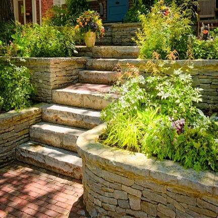 Vivaio il corbezzolo vivai piante articoli da giardino for Piante antiche da frutto