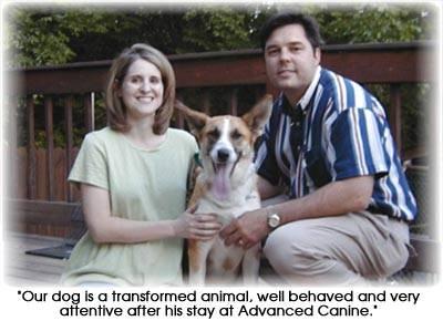 Advanced Canine Nashville Dog Training