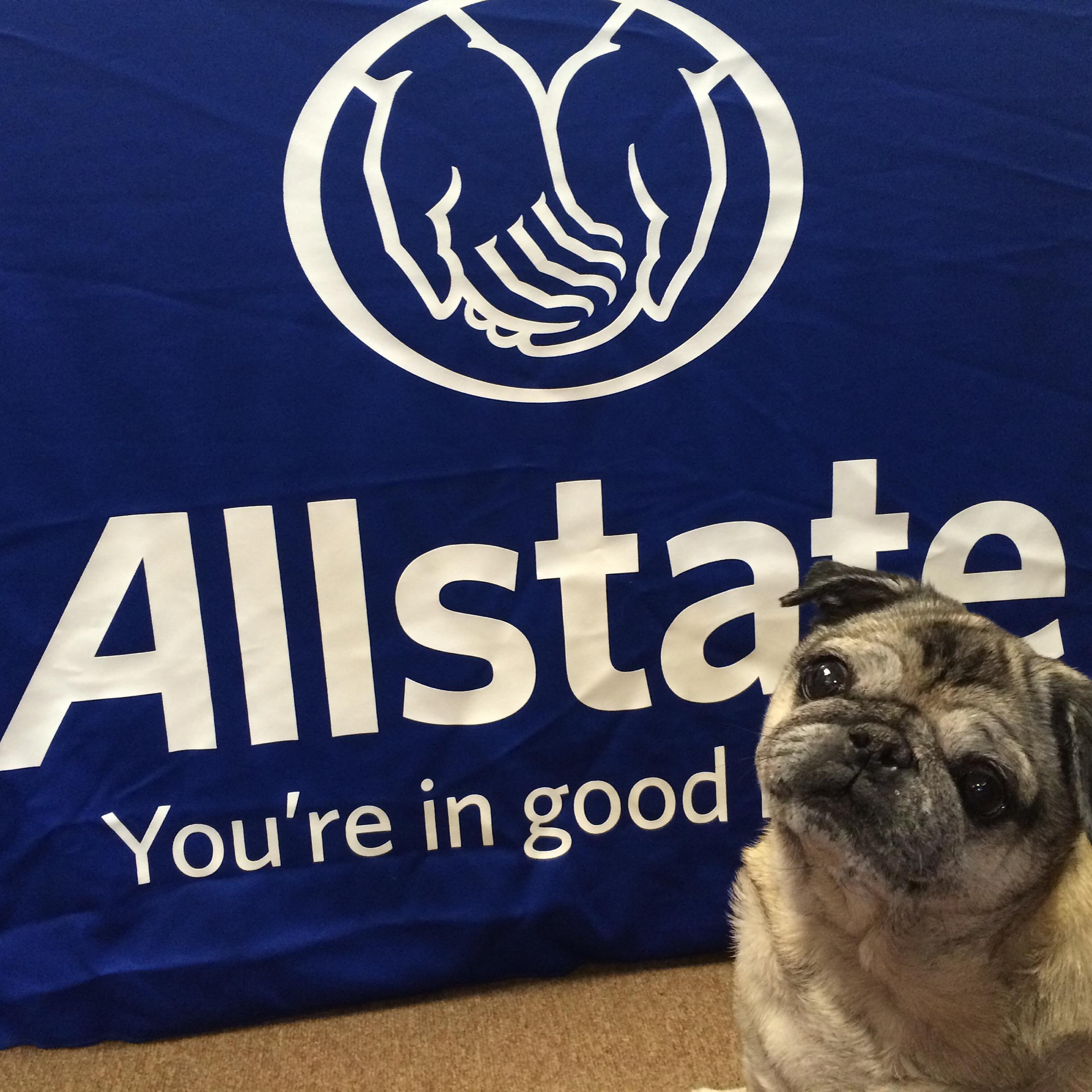 Allstate Insurance Agent: Tracie Bibb In Eureka, MO 63025