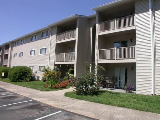 Lincoya Bay Apartments Reviews