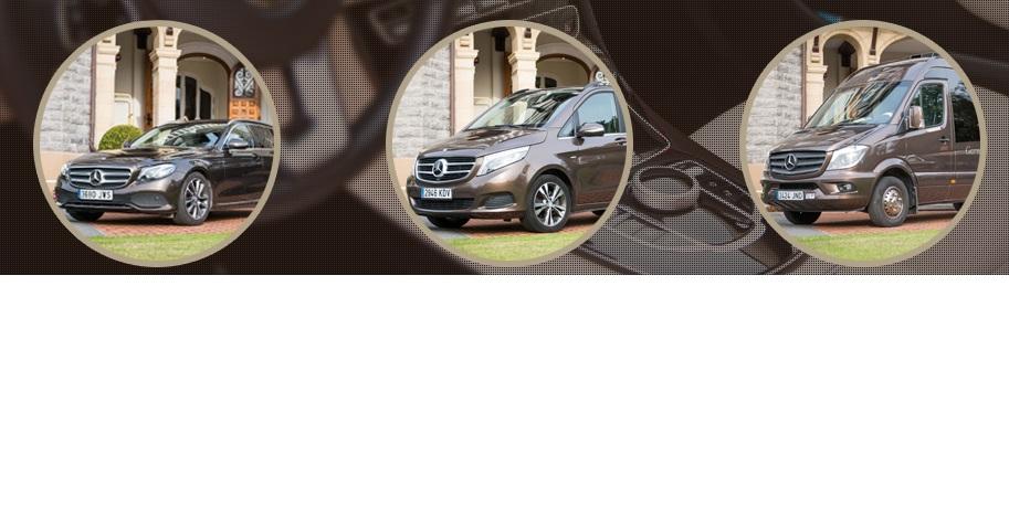 Taxis y Microbuses Garmendia Premium