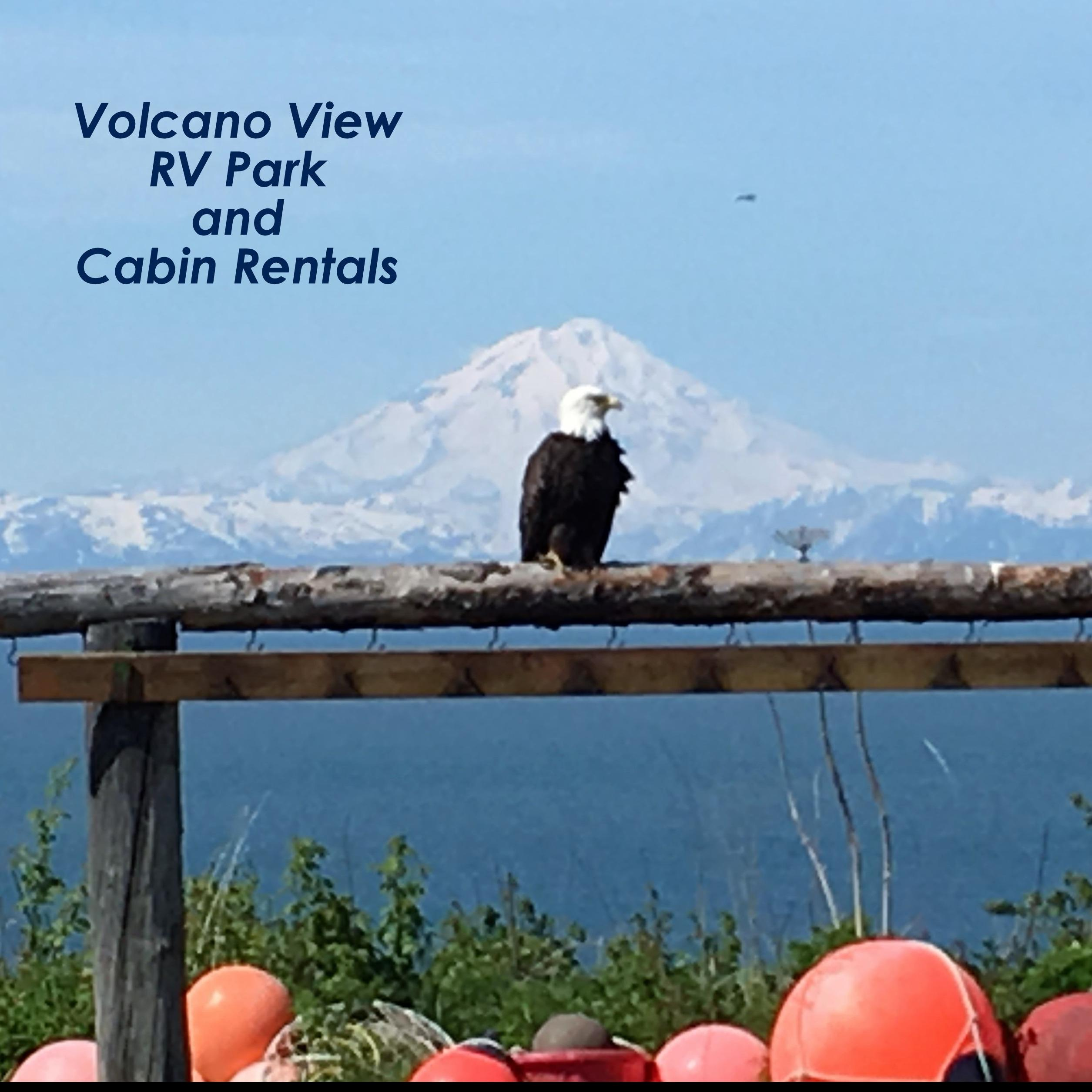 Volcano View Rv Park and Cabin Rentals