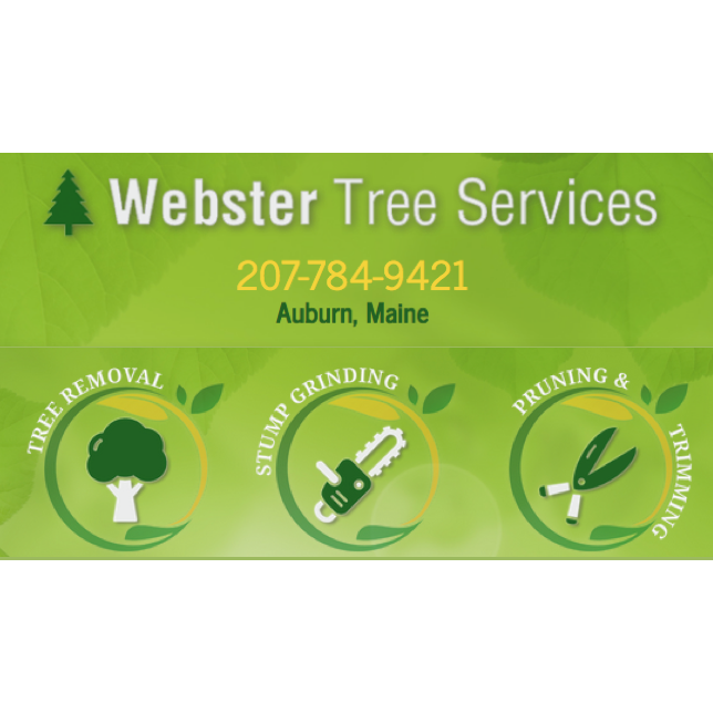 Webster Tree Service