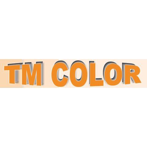 Bild zu Autolackiererei TM Color in Ginsheim Gustavsburg