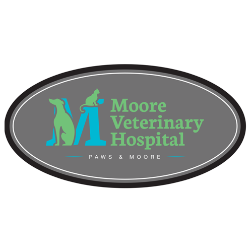 Moore Veterinary Hospital - Franklin, OH 45005 - (937)806-3410 | ShowMeLocal.com