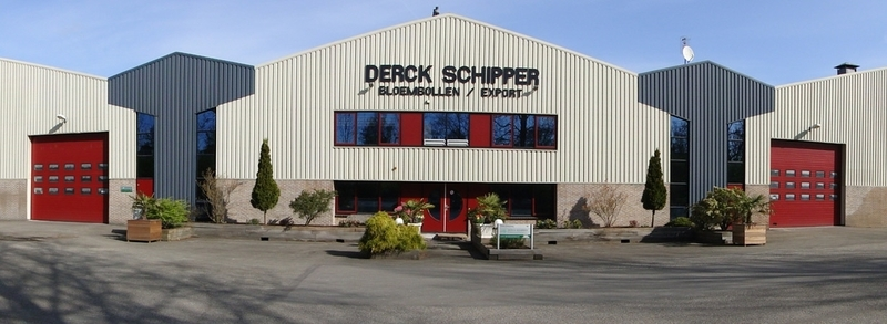 Schipper Bloembollen Export BV Derck