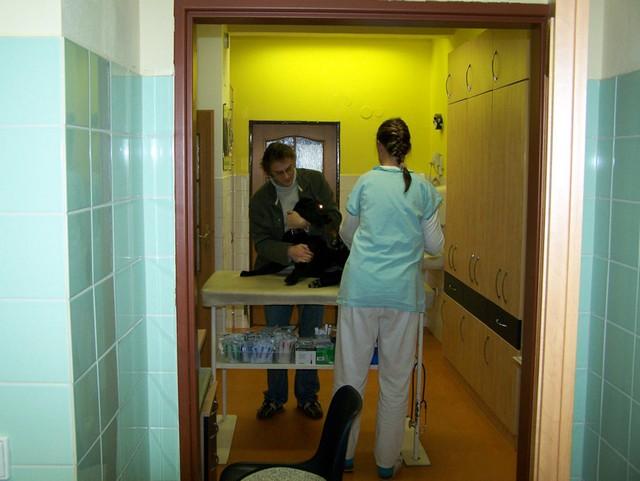 Veterinární klinika Kleisslova