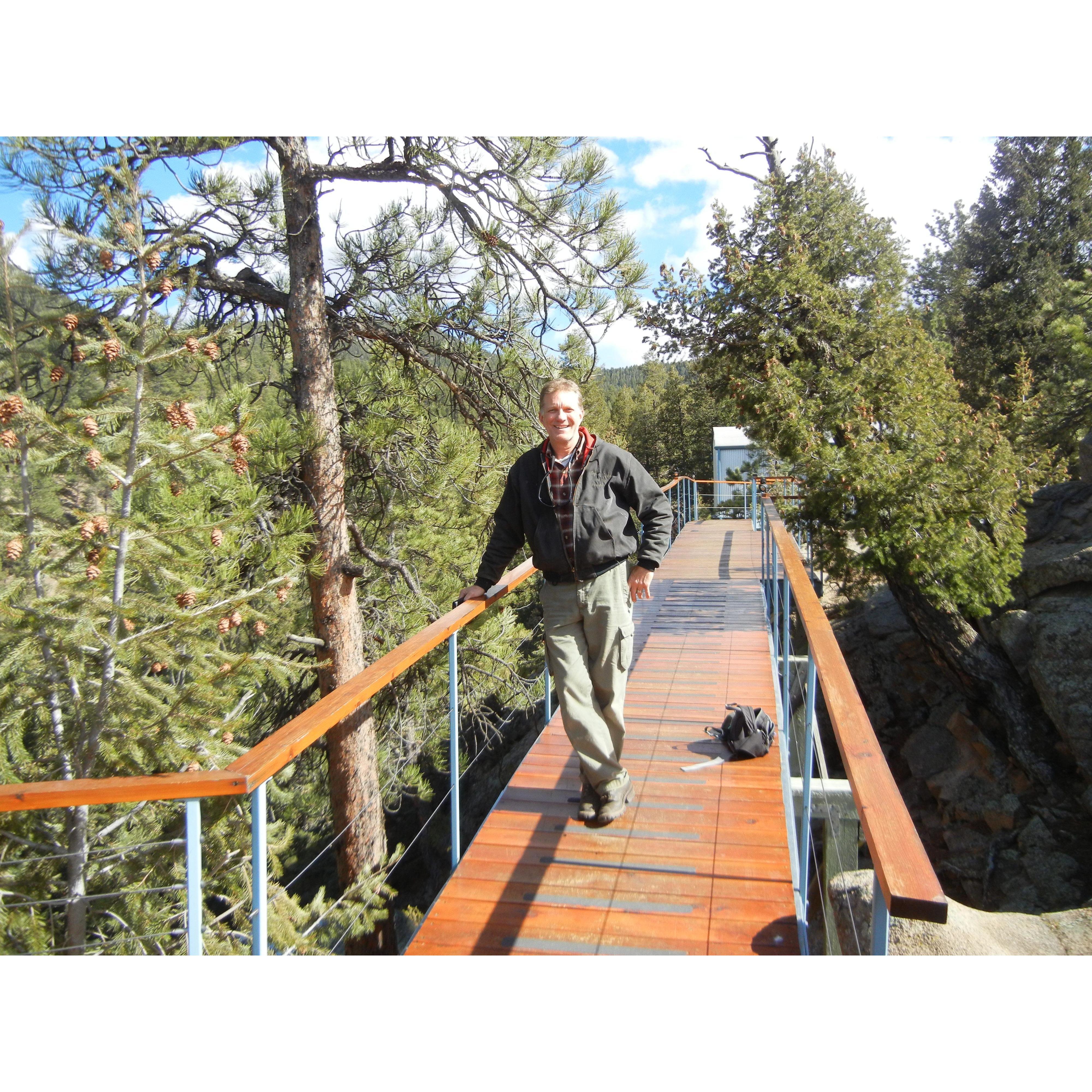 Colorado Tree Arborist