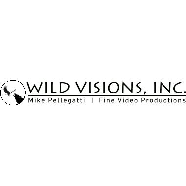 Wild Visions