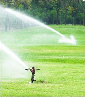 Jersey Shore Lawn Sprinkler