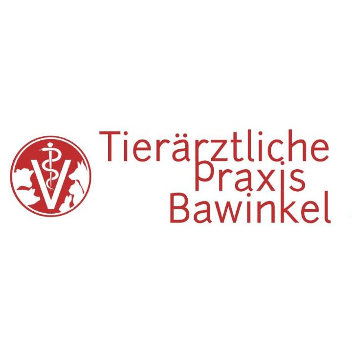 Bild zu Tierärztliche Praxis Bawinkel Dr. Dirk F. Jünemann in Bawinkel