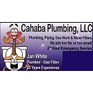Plumbing and Gas L L C